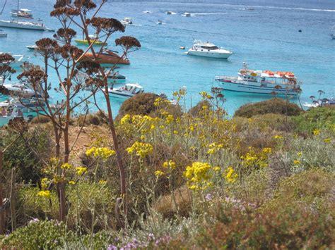 malta turisti per caso comino viaggi vacanze e turismo turisti per caso