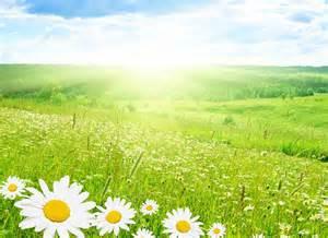 imgenes de paisajes fotos de paisajes bonitos imagenes de hermosos paisajes naturales paisajes y