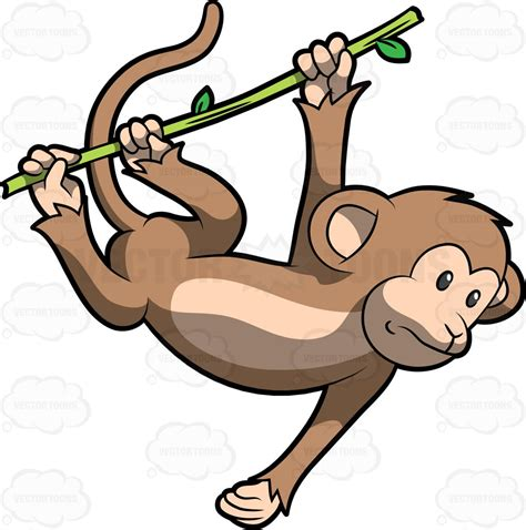 how to draw a monkey swinging on a vine monkey swinging from tree clipart 35
