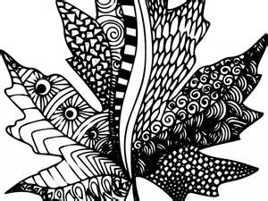 maple leaf coloring page zentangle sheet mcoloring