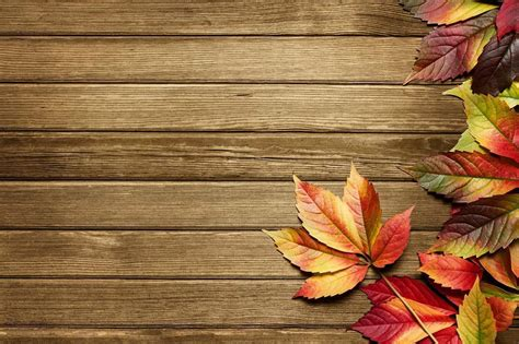 Autumn Backgrounds Wallpaper Cave Fall Powerpoint Background