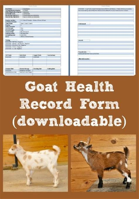 new year make a goat mobile goat health record form downloadable