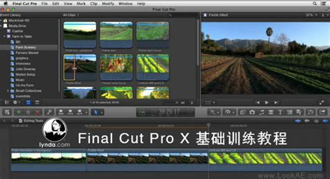 final cut pro lynda fcpx基础训练教程 lynda final cut pro x essential training fcpx资源站