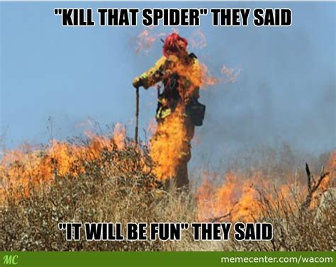 Killing Spiders Meme - killing spiders meme 28 images killing quotes like