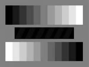 black white and gray colors gray chip chart
