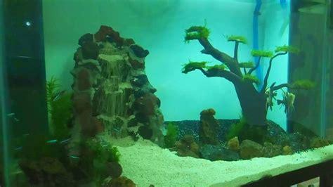 aquascape air terjun aquascape waterfall air terjun diy 1 chavlog youtube