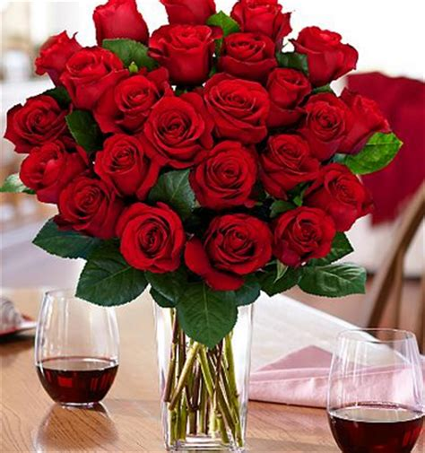 Proflowers No Vase by Proflowers Two Dozen Roses With A Vase Just 38 47
