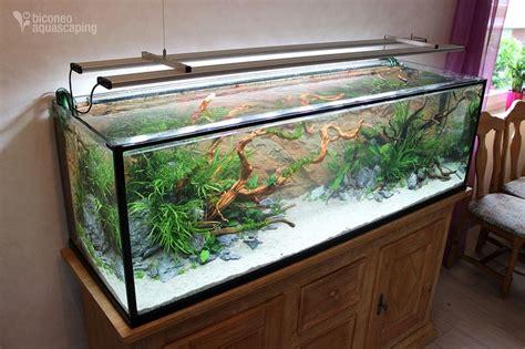 Wohnzimmer Beleuchtung Ideen 870 by Die Besten 17 Ideen Zu Aquarium Einrichten Auf