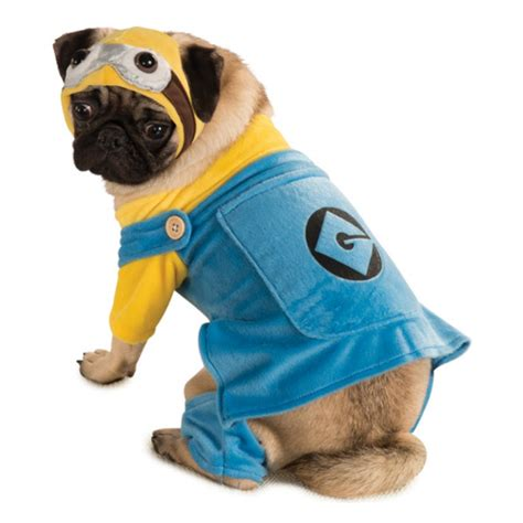minion dogs minion costume baxterboo