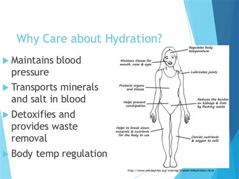 hydration blood pressure hydration and nutrition ppt for keiro