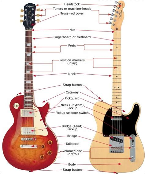 guitar anatomy of an electric guitar resources