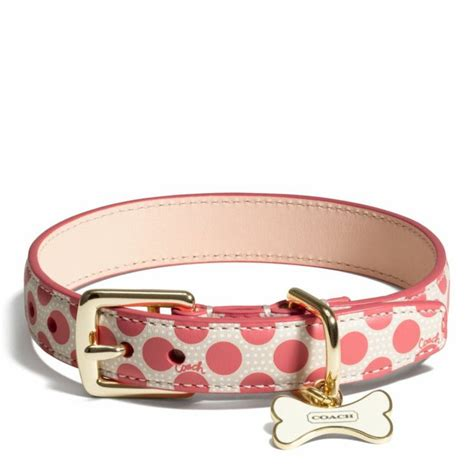 coach collars the poppy polka dot collar from coach