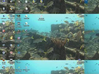 wallpaper alam rar dreamscene underwater video wallpaper