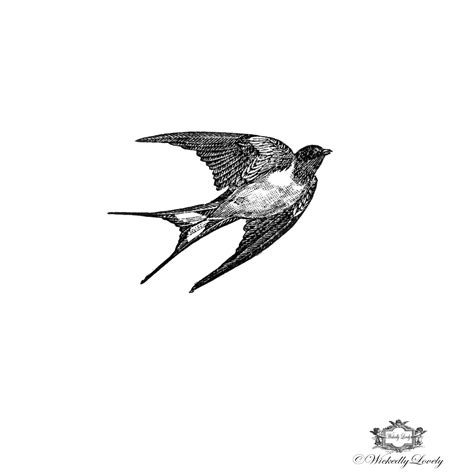 black and white swallow tattoo designs black and white vintage bird
