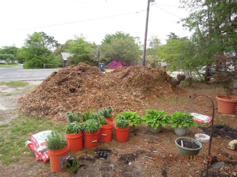 eco whole yard landscaping using wood chips