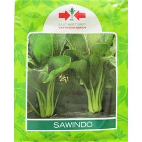 Benih Sawi Pakcoy Agrophoria sawi sawindo alat hidroponik