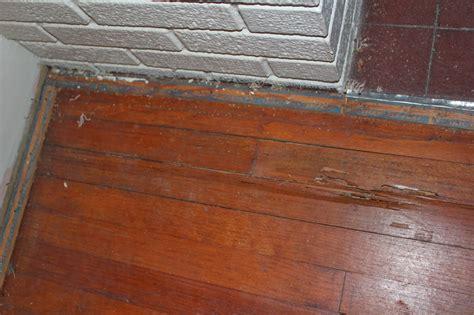 Hardwood Floor Termite Damage by Termite Damage To Wood