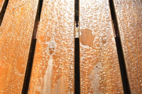 How To Remove Water Stains From Car Ceiling by Remove Water Stains From Wood Other Surfaces Cleanipedia