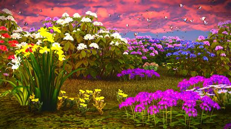fiori 3d wallpaper butterflies 3d graphics phlox flowers daffodils