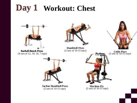 bench press workout for beginners barbell and dumbbell workout beginner eoua blog