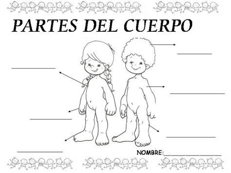 imagenes infantiles del cuerpo humano dibujos infantiles del cuerpo humano para colorear