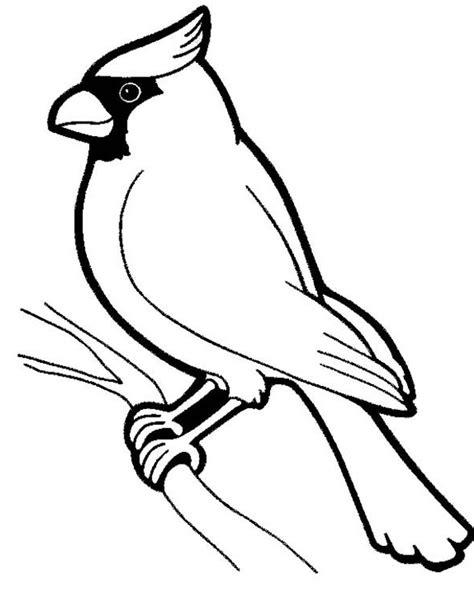 sketsa gambar burung hantu merak garuda elang gambarcoloring