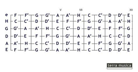 wo liegen die noten auf der gitarre das gro 223 e deutschsprachige gitarrenforum keyboardnoten