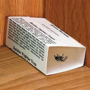 spider traps spider sticky traps spider glue traps easy comforts