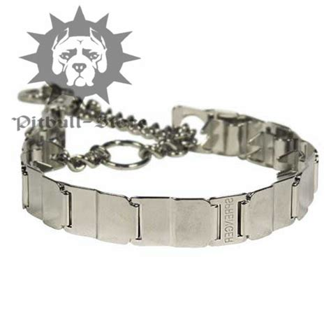 pitbull puppy collars pit bull collars breeds picture
