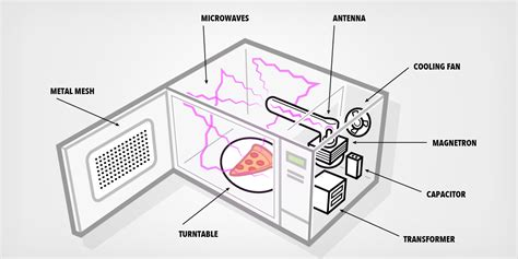 how do you microwave a how do microwaves work business insider