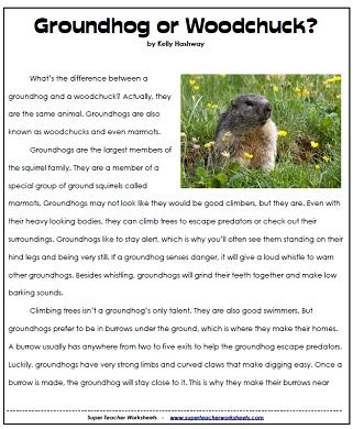 groundhog day meaning for preschoolers pictures on free printable reading comprehension