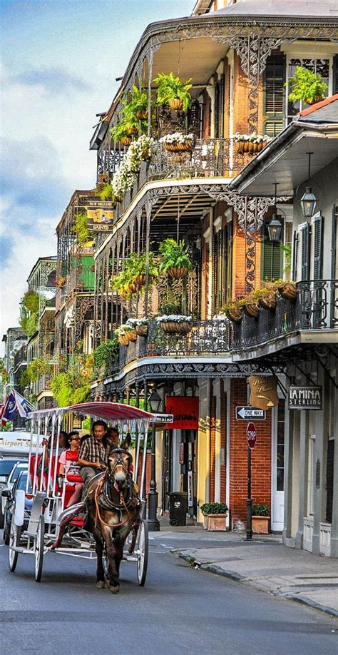 top 10 things to do in new orleans bourbon street and