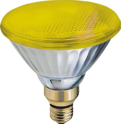 outdoor bug light bulbs ge lighting 20945 85 watt par38 outdoor incandescent bug