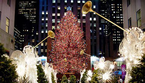 christmas trees jersey city tree nyc