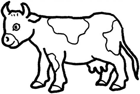 cow coloring pages gianfreda net