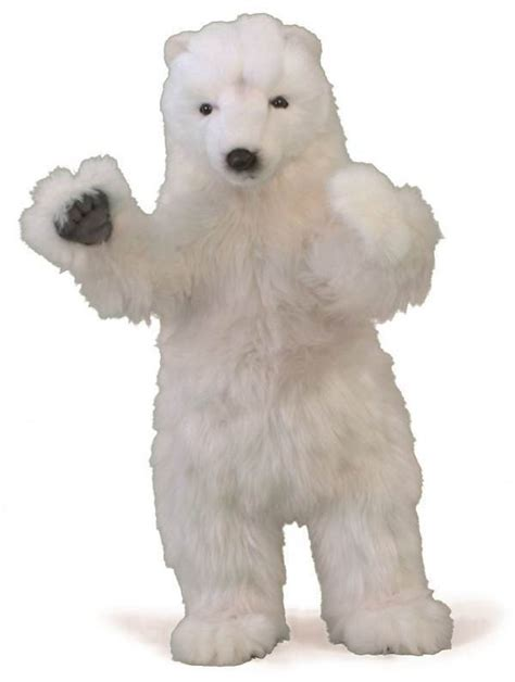 hansa  polar bear standing   feet