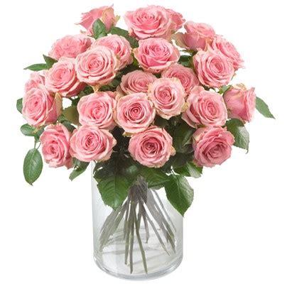 Flowers In November 187 rosa rosen 24 rosen ab 170 chf