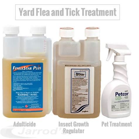 home remedies for ticks in yard 28 images why is it