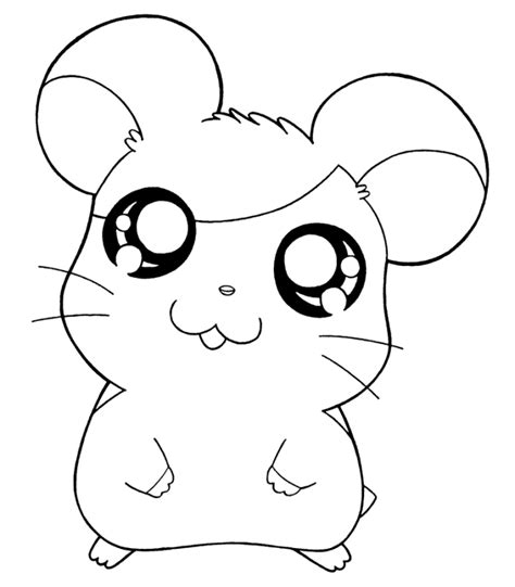 picture of hamtaro coloring home