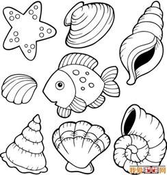 shell coloring pages free shells starfish coloring pages