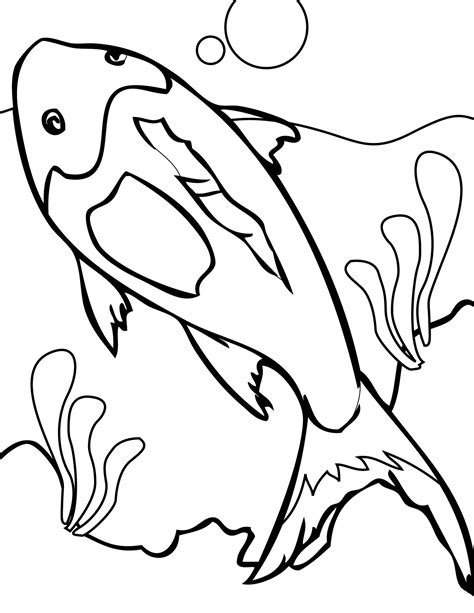 free coloring pages of coral reefs