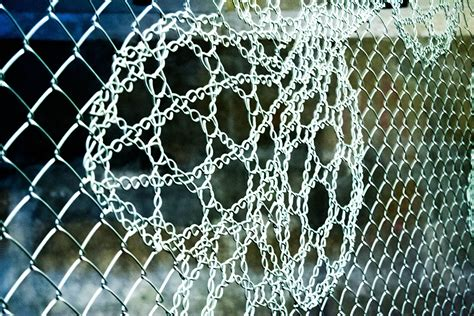 Decorative Chain Link Fence by Decorative Chain Link Fence Color Fence Ideas Easy