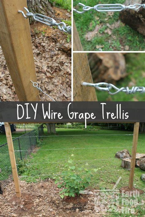how to make grape vine trellis 25 best ideas about grape vine trellis on