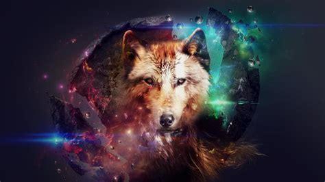 imagenes de lobos en 4k fondos de escritorio hd lobos fondos de pantalla