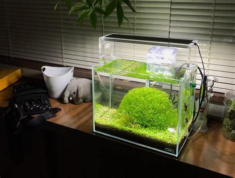 Jual Lu Aquarium Surabaya harga aquarium ikan hias surabaya denah rumah