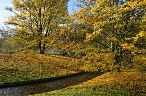 japanischer garten hasselt japanese garden hasselt belgium japanese garden