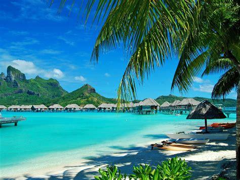 hawaii blue sea sandy beaches green palm trees