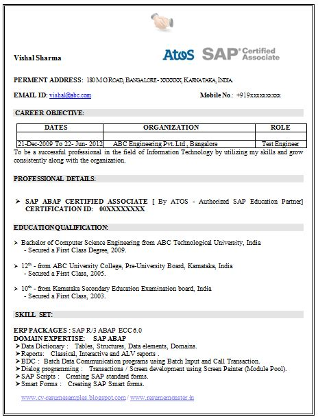 Resume Computer Skills Sap Resume Template Of A Sap Certified Professional With Great Work Experience And Interpersonal
