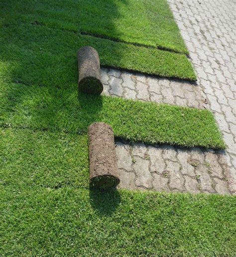 Preis Rollrasen Verlegen 2209 by Rollrasen Garten Einebinsenweisheit