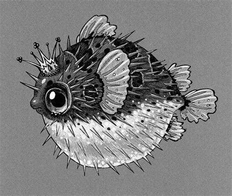 puffer fish tattoo drawing of ornate puffer fish wearing crown against gray